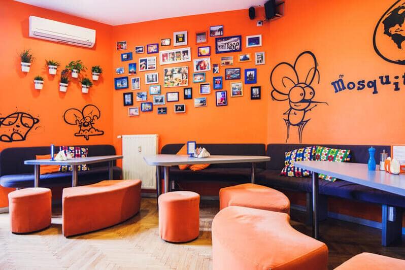 Hostels in Krakow -mosquito hostel krakow